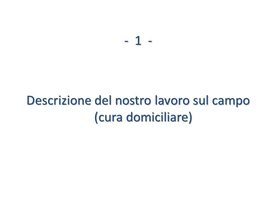 -1 - Descrizione del nostro lavoro sul campo (cura domiciliare)