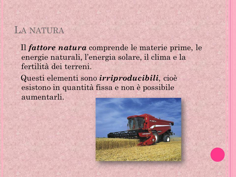 L A NATURA Il fattore natura comprende le materie prime, le energie naturali, lenergia solare, il clima e la fertilità dei terreni. Questi elementi so