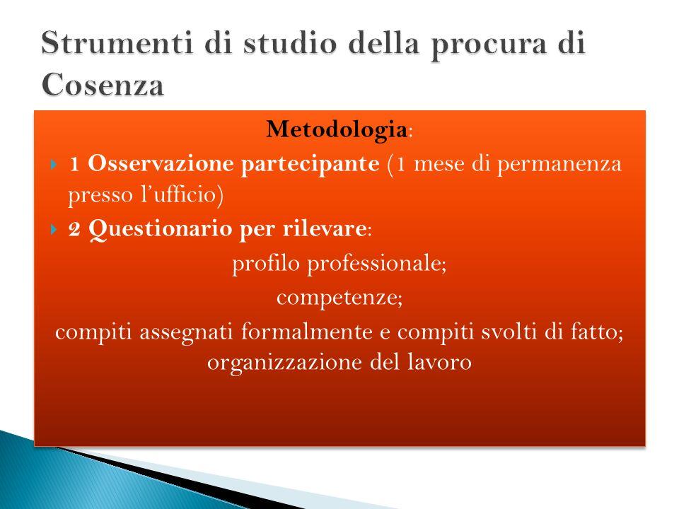 Metodologia : 1 Osservazione partecipante (1 mese di permanenza presso lufficio) 2 Questionario per rilevare : profilo professionale; competenze; comp