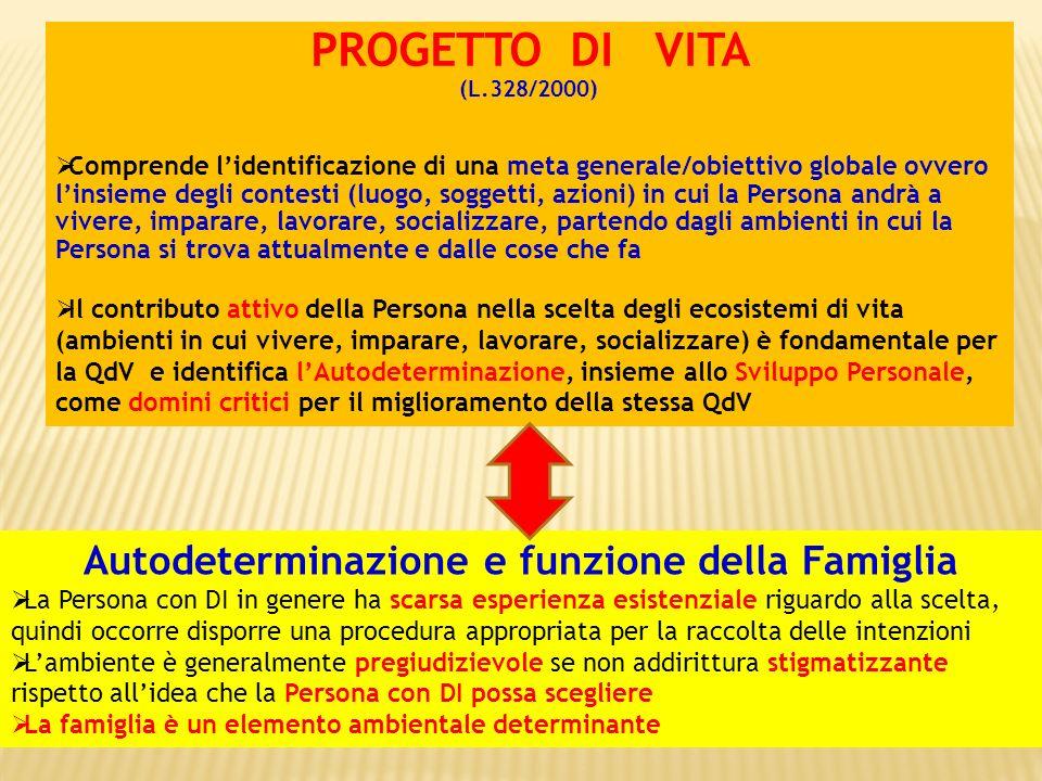 PROGETTO DI VITA (L.328/2000) Comprende lidentificazione di una meta generale/obiettivo globale ovvero linsieme degli contesti (luogo, soggetti, azion