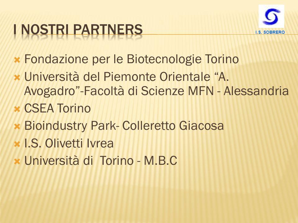 Fondazione per le Biotecnologie Torino Università del Piemonte Orientale A. Avogadro-Facoltà di Scienze MFN - Alessandria CSEA Torino Bioindustry Park