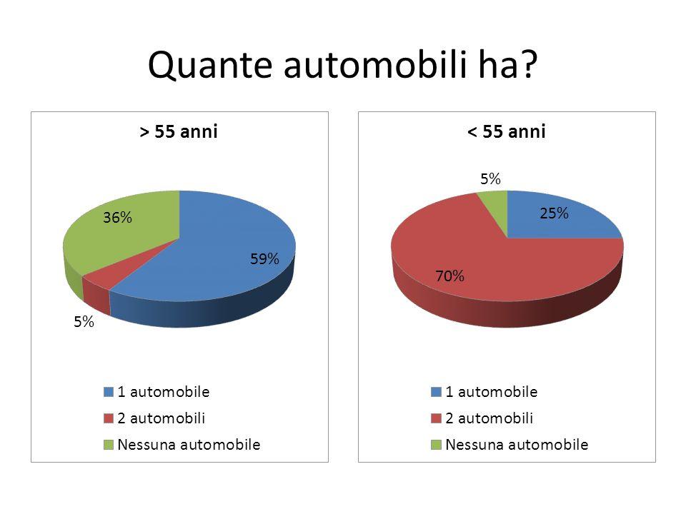 Quante automobili ha?