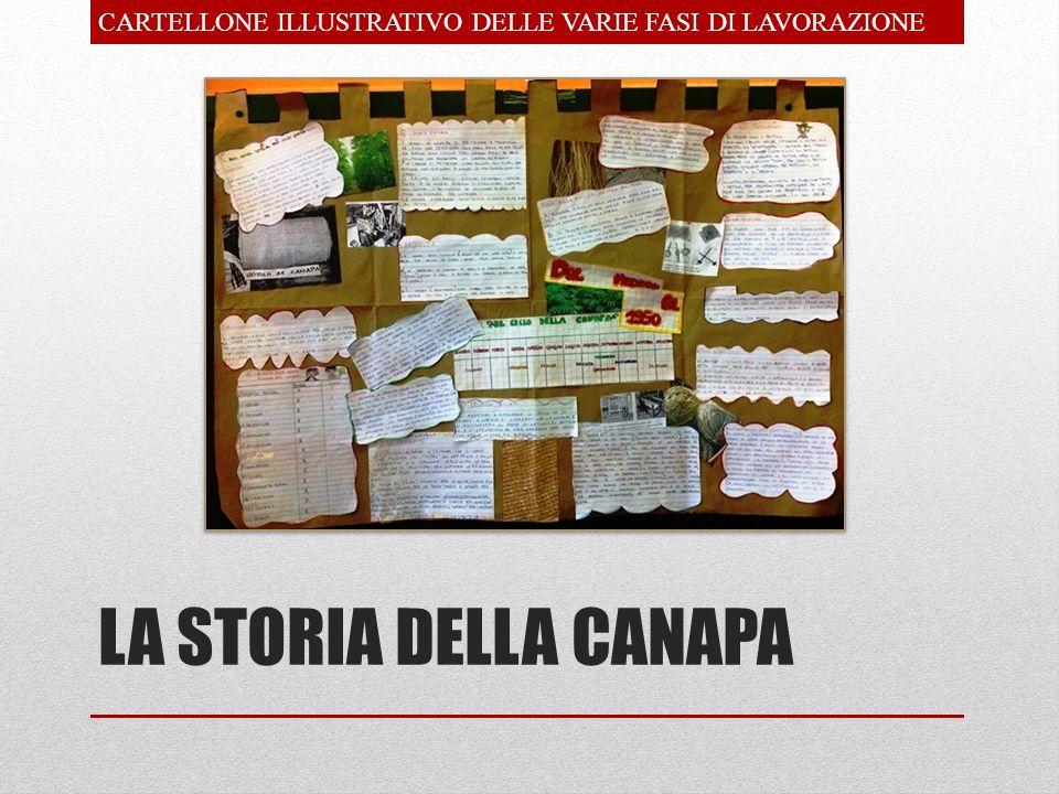 LA STORIA DELLA CANAPA CARTELLONE ILLUSTRATIVO DELLE VARIE FASI DI LAVORAZIONE