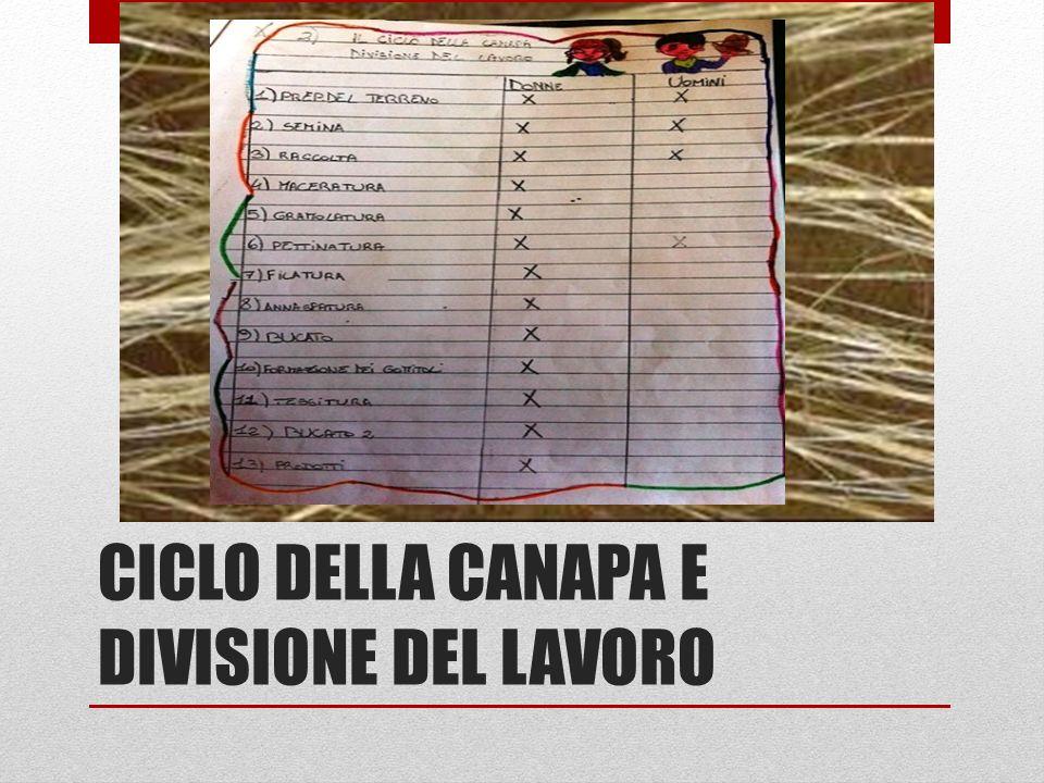 CICLO DELLA CANAPA E DIVISIONE DEL LAVORO