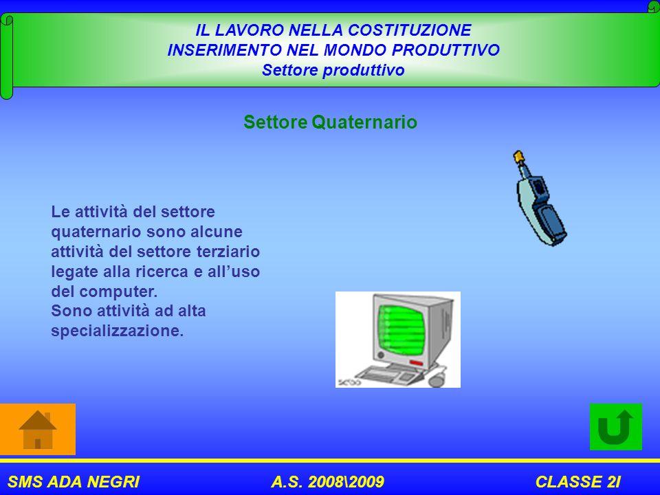 SMS ADA NEGRI A.S. 2008\2009 CLASSE 2I IL LAVORO NELLA COSTITUZIONE INSERIMENTO NEL MONDO PRODUTTIVO Settore produttivo Settore Quaternario Le attivit