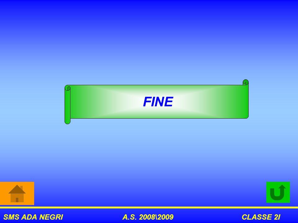 SMS ADA NEGRI A.S. 2008\2009 CLASSE 2I FINE