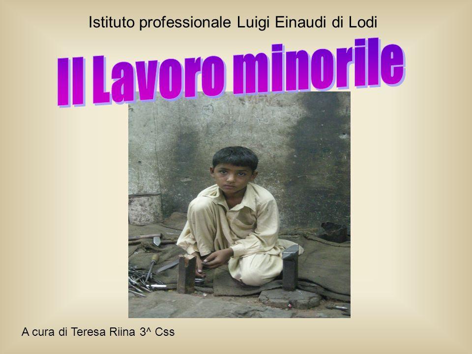 Istituto professionale Luigi Einaudi di Lodi A cura di Teresa Riina 3^ Css