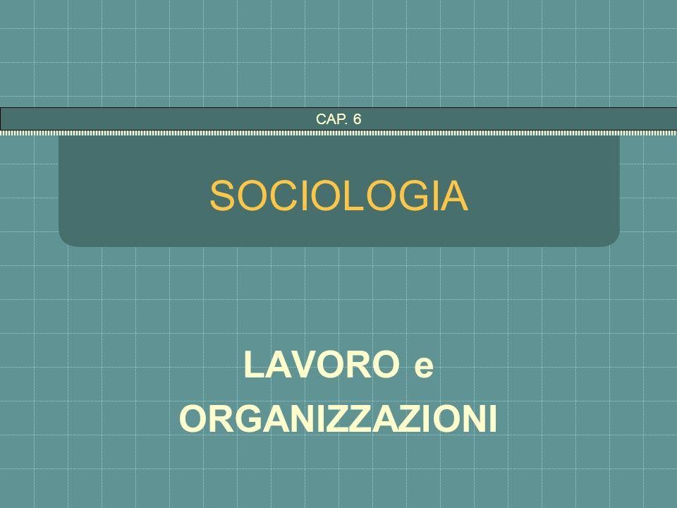 SOCIOLOGIA LAVORO e ORGANIZZAZIONI CAP. 6