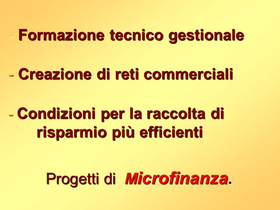 -Formazione tecnico gestionale -Creazione di reti commerciali -Condizioni per la raccolta di risparmio più efficienti Progetti di di M icrofinanza.