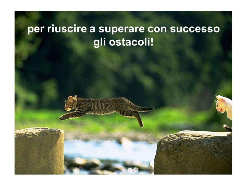 per riuscire a superare con successo gli ostacoli!