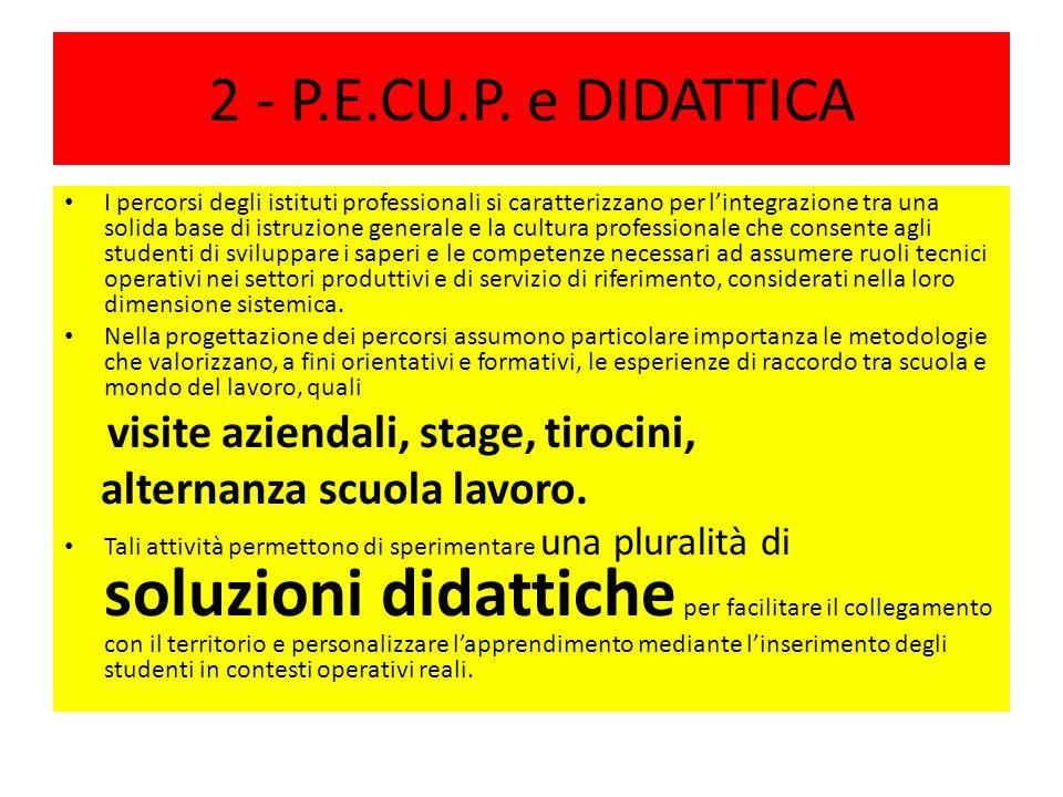 2 - P.E.CU.P.