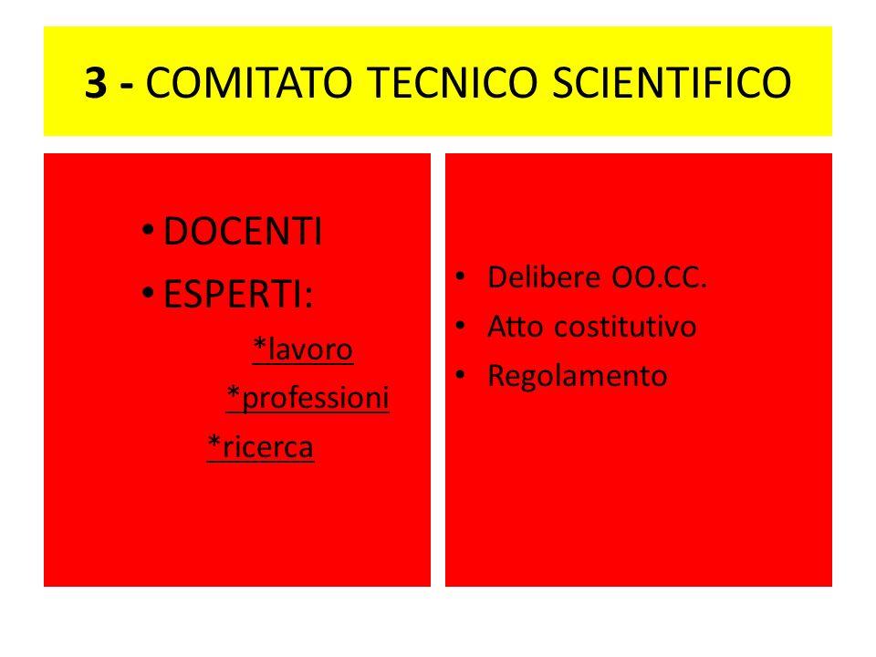 3 - COMITATO TECNICO SCIENTIFICO DOCENTI ESPERTI: *lavoro *professioni *ricerca Delibere OO.CC.