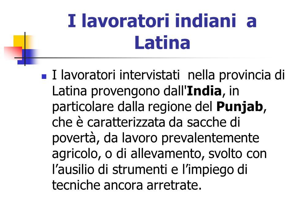 I lavoratori indiani a Latina I lavoratori intervistati nella provincia di Latina provengono dall'India, in particolare dalla regione del Punjab, che