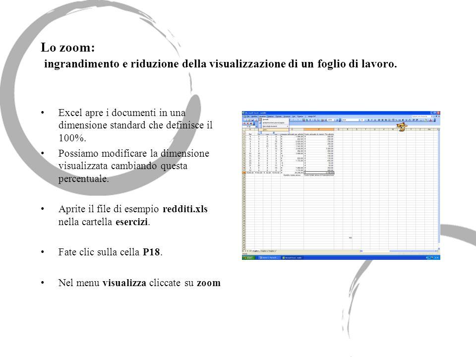 Lo zoom: ingrandimento e riduzione della visualizzazione di un foglio di lavoro. Excel apre i documenti in una dimensione standard che definisce il 10
