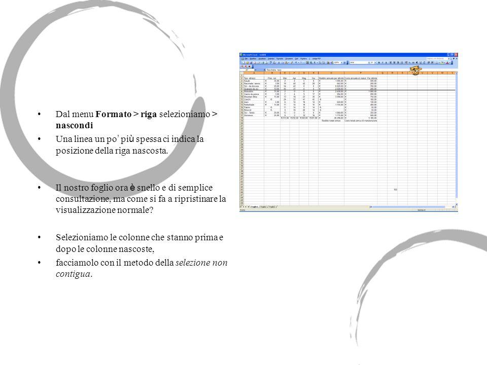 Dal menu Formato > riga selezioniamo > nascondi Una linea un po pi ù spessa ci indica la posizione della riga nascosta.