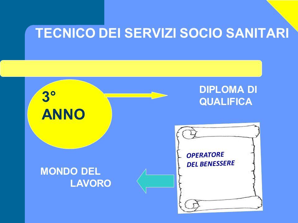 TECNICO DEI SERVIZI SOCIO SANITARI 3° ANNO DIPLOMA DI QUALIFICA MONDO DEL LAVORO OPERATORE DEL BENESSERE