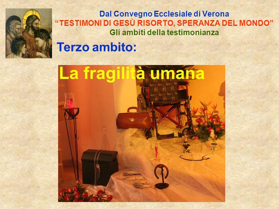 Dal Convegno Ecclesiale di Verona TESTIMONI DI GESÙ RISORTO, SPERANZA DEL MONDO Gli ambiti della testimonianza Quinto ambito: La Cittadinanza