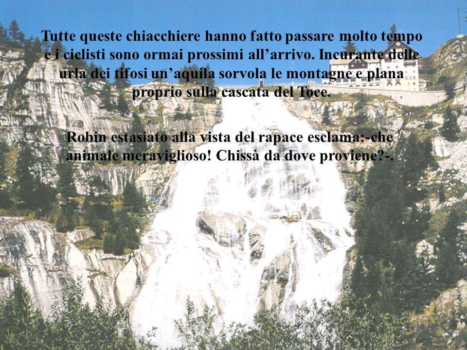 -Sempre a nord di Crevoladossola, si estrae il serizzo, in tre varietà: scuro, bianco e grigio; molto usato come pietra ornamentale. Il serizzo a diff
