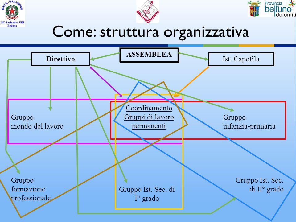 Come: struttura organizzativa ASSEMBLEA Gruppo mondo del lavoro Gruppo Ist. Sec. di I° grado Coordinamento Gruppi di lavoro permanenti Gruppo formazio