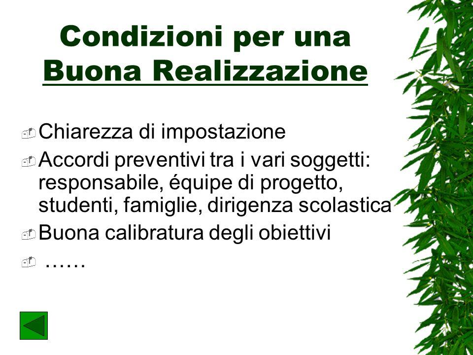 La Realizzazione Un progetto pensato e presentato non sempre viene realizzato, per esempio se le condizioni necessarie non si verificano.