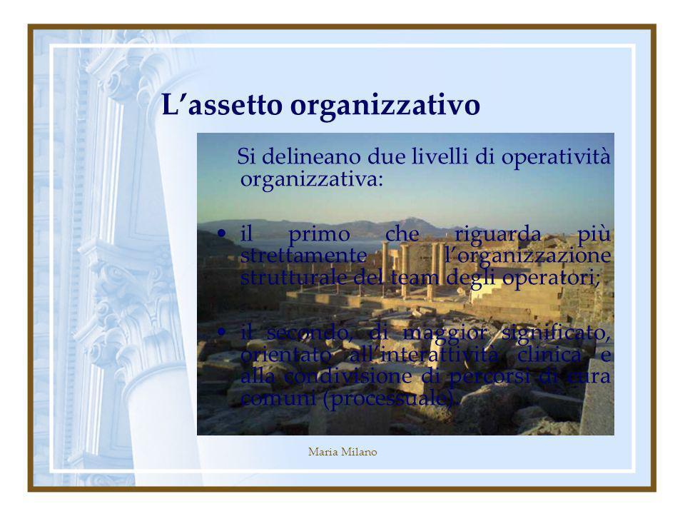 Maria Milano Lassetto organizzativo Si delineano due livelli di operatività organizzativa: il primo che riguarda più strettamente lorganizzazione strutturale del team degli operatori; il secondo, di maggior significato, orientato allinterattività clinica e alla condivisione di percorsi di cura comuni (processuale).