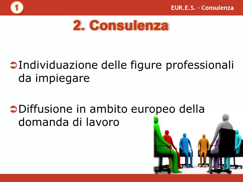 Individuazione delle figure professionali da impiegare Diffusione in ambito europeo della domanda di lavoro EUR.E.S.