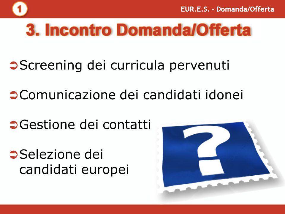 Screening dei curricula pervenuti Comunicazione dei candidati idonei Gestione dei contatti Selezione dei candidati europei EUR.E.S.