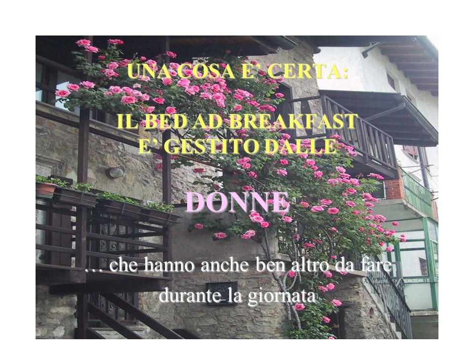 Il Bed and Breakfast non è considerato unattività primaria, e ciò va ad aggravare la fatica quotidiana della padrona di casa In montagna, il turismo familiare è stato tradizionalmente praticato fin dal secolo scorso