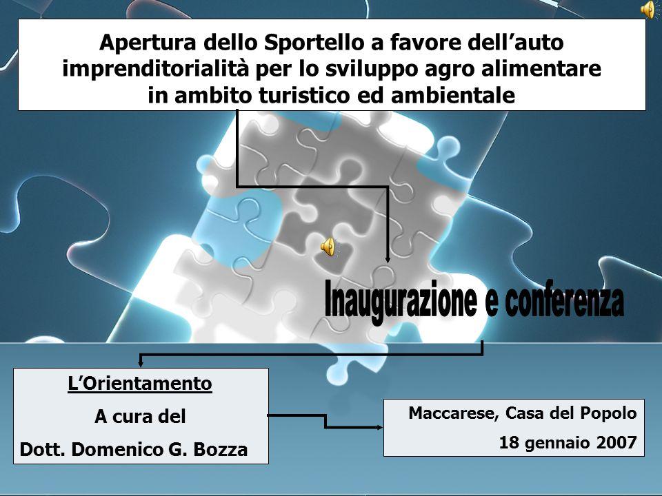 Riferimenti bibliografici Riferimenti bibliografici Bozza D.G.
