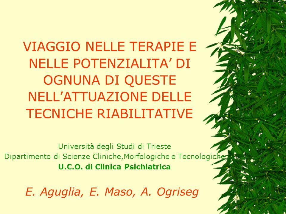 VIAGGIO NELLE TERAPIE E NELLE POTENZIALITA DI OGNUNA DI QUESTE NELLATTUAZIONE DELLE TECNICHE RIABILITATIVE Università degli Studi di Trieste Dipartime