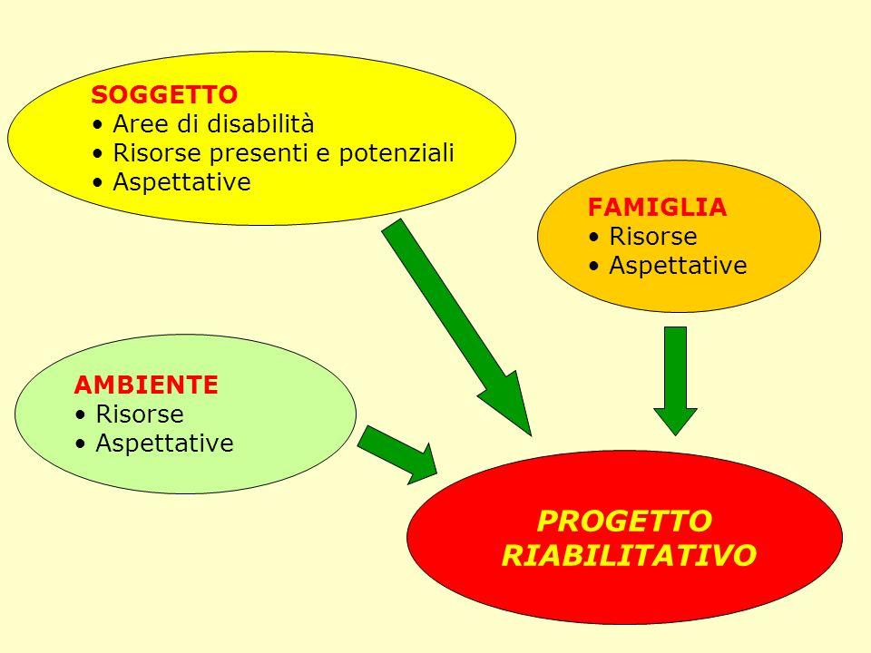 SOGGETTO Aree di disabilità Risorse presenti e potenziali Aspettative AMBIENTE Risorse Aspettative FAMIGLIA Risorse Aspettative PROGETTO RIABILITATIVO