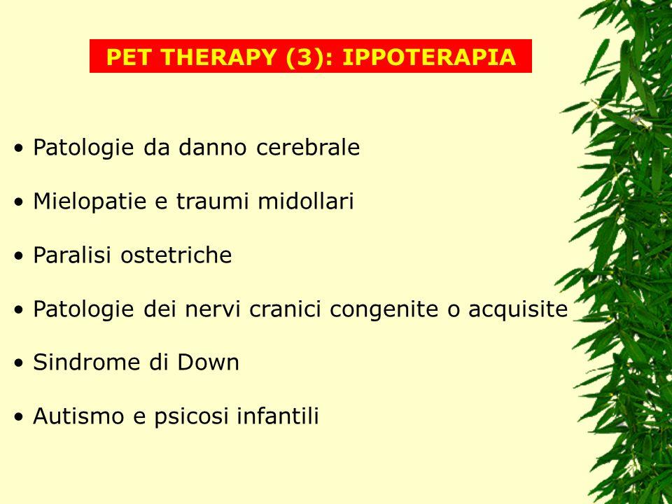 PET THERAPY (3): IPPOTERAPIA Patologie da danno cerebrale Mielopatie e traumi midollari Paralisi ostetriche Patologie dei nervi cranici congenite o ac