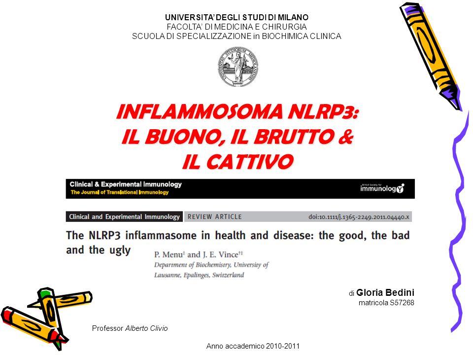 di Gloria Bedini matricola S57268 Professor Alberto Clivio Anno accademico 2010-2011 UNIVERSITA DEGLI STUDI DI MILANO FACOLTA DI MEDICINA E CHIRURGIA