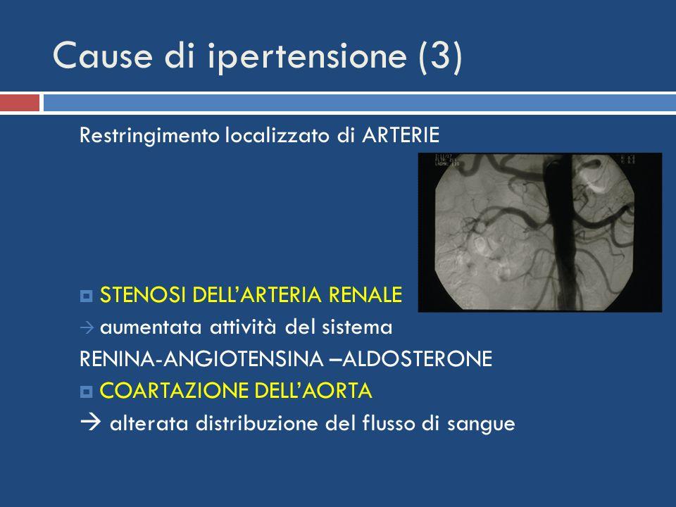 Cause di ipertensione (3) Restringimento localizzato di ARTERIE STENOSI DELLARTERIA RENALE aumentata attività del sistema RENINA-ANGIOTENSINA –ALDOSTE