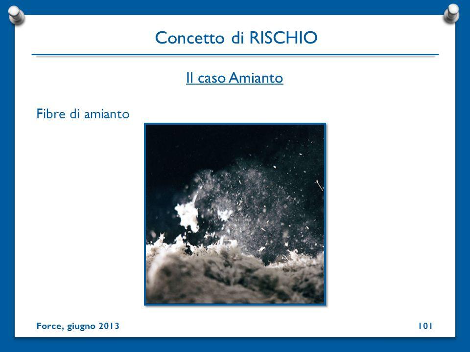 Fibre di amianto Concetto di RISCHIO Force, giugno 2013 Il caso Amianto 101