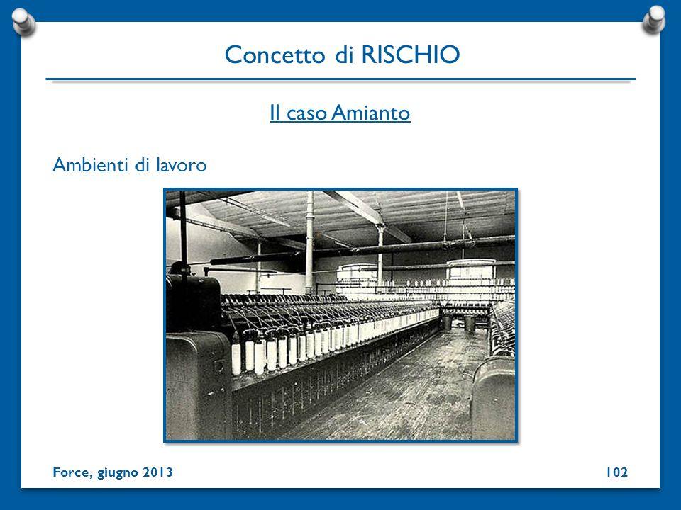 Ambienti di lavoro Concetto di RISCHIO Force, giugno 2013 Il caso Amianto 102