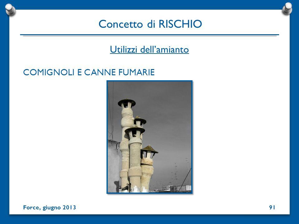 COMIGNOLI E CANNE FUMARIE Utilizzi dellamianto Concetto di RISCHIO Force, giugno 201391