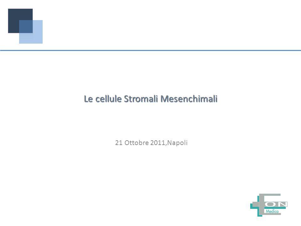 21 Ottobre 2011,Napoli Le cellule Stromali Mesenchimali