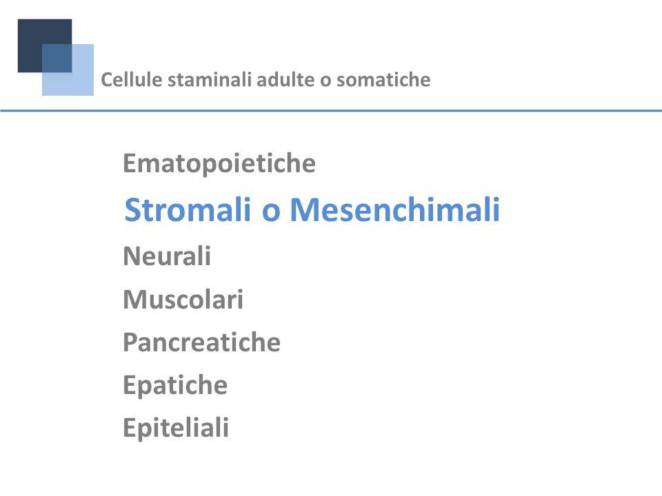 Ematopoietiche Stromali o Mesenchimali Neurali Muscolari Pancreatiche Epatiche Epiteliali Cellule staminali adulte o somatiche