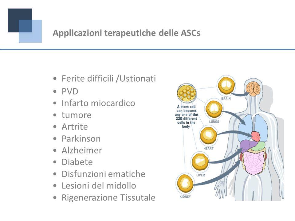 Applicazioni terapeutiche delle ASCs Ferite difficili /Ustionati PVD Infarto miocardico tumore Artrite Parkinson Alzheimer Diabete Disfunzioni ematich