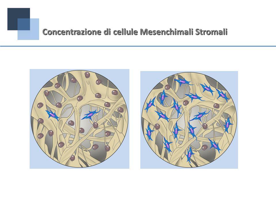 Concentrazione di cellule Mesenchimali Stromali