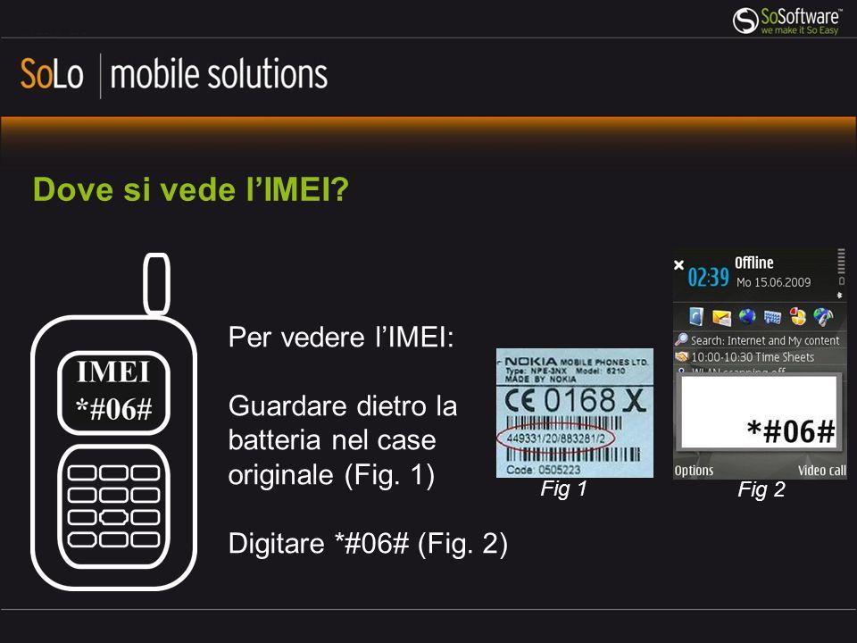 Roadmap 2011: Q3 11 (previsto) SoLo mobile client per iPhone Stato attuale: In attesa di approvazione da parte di Apple Q411 (previsto) SoLo mobile client per Window Phone 7.5 Stato attuale: In attesa della funzionalità multi-tasking