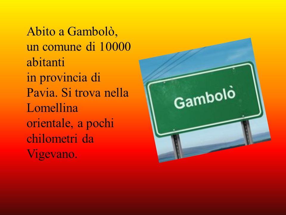 Abito a Gambolò, un comune di 10000 abitanti in provincia di Pavia. Si trova nella Lomellina orientale, a pochi chilometri da Vigevano.