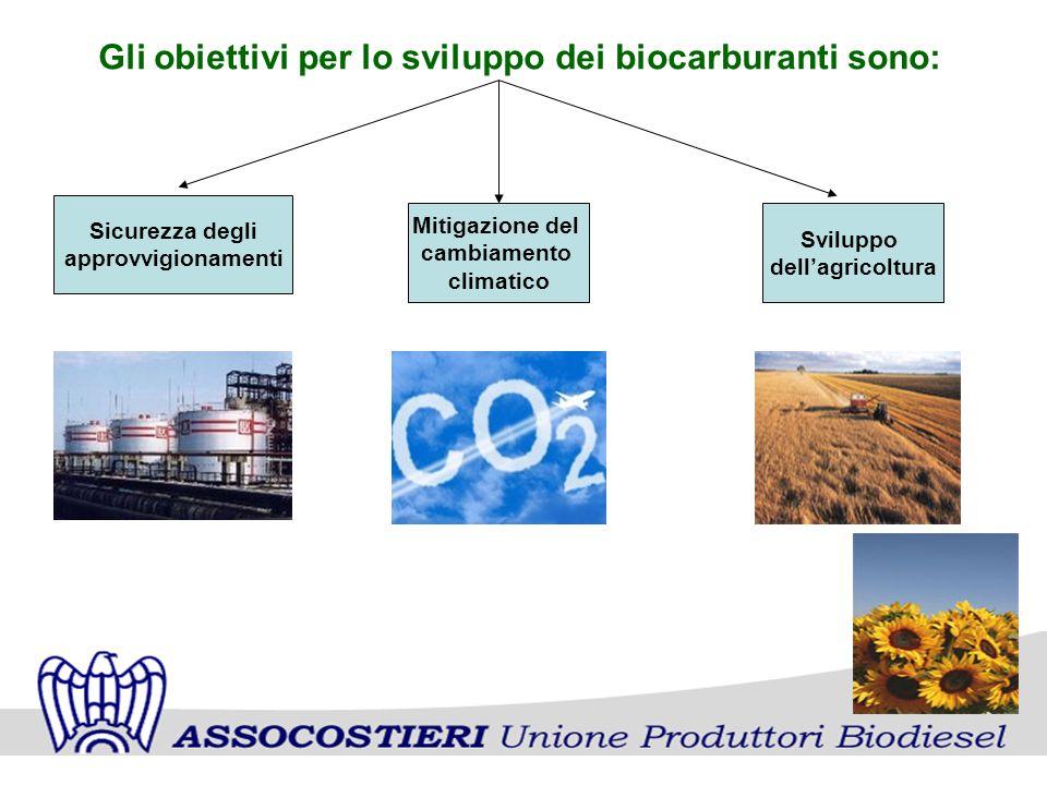 Gli obiettivi per lo sviluppo dei biocarburanti sono: Sicurezza degli approvvigionamenti Mitigazione del cambiamento climatico Sviluppo dellagricoltura