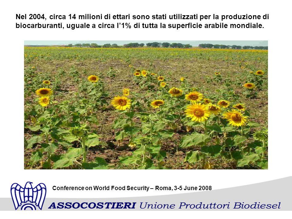 Nel 2004, circa 14 milioni di ettari sono stati utilizzati per la produzione di biocarburanti, uguale a circa l1% di tutta la superficie arabile mondiale.