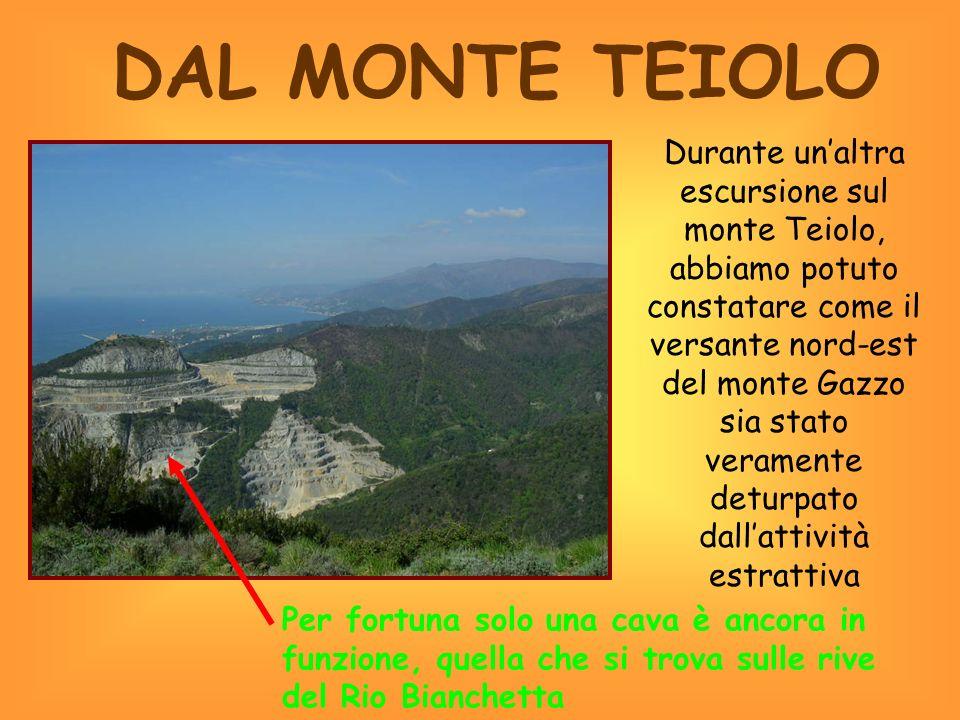 IL MONTE ROSICCHIATO Arrivati al Cian dei Galli abbiamo trovato un cancello di accesso alla cava di Gneo e abbiamo notato il versante nord-ovest del monte modificato dallattività estrattiva.