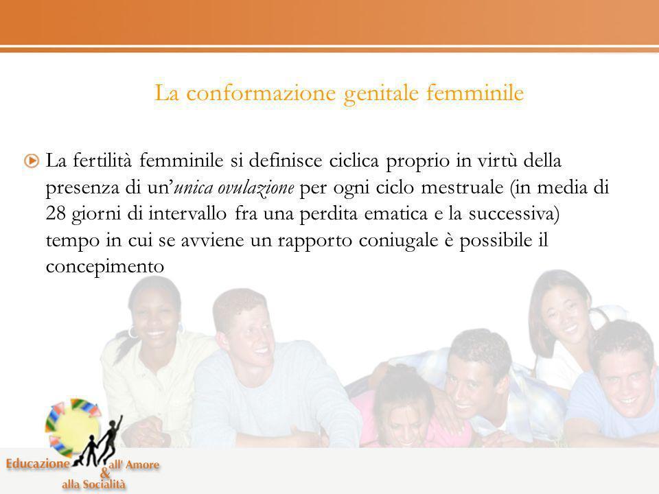 La conformazione genitale femminile La fertilità femminile si definisce ciclica proprio in virtù della presenza di ununica ovulazione per ogni ciclo m