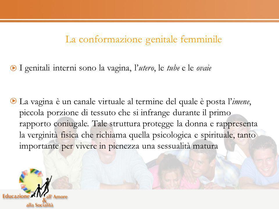 La conformazione genitale femminile I genitali interni sono la vagina, lutero, le tube e le ovaie La vagina è un canale virtuale al termine del quale