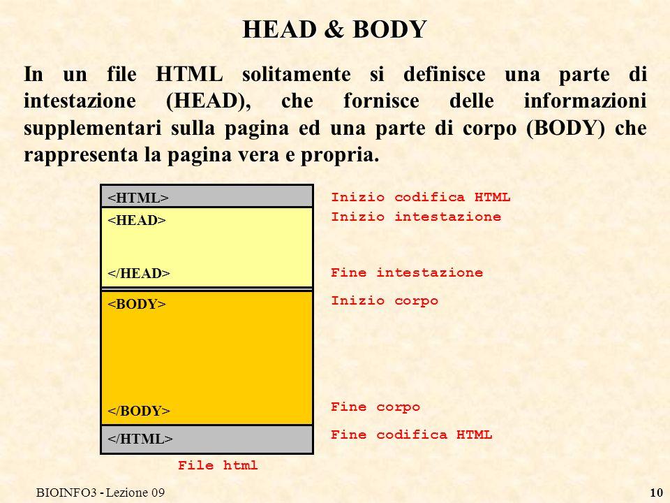 BIOINFO3 - Lezione 0910 HEAD & BODY In un file HTML solitamente si definisce una parte di intestazione (HEAD), che fornisce delle informazioni supplementari sulla pagina ed una parte di corpo (BODY) che rappresenta la pagina vera e propria.