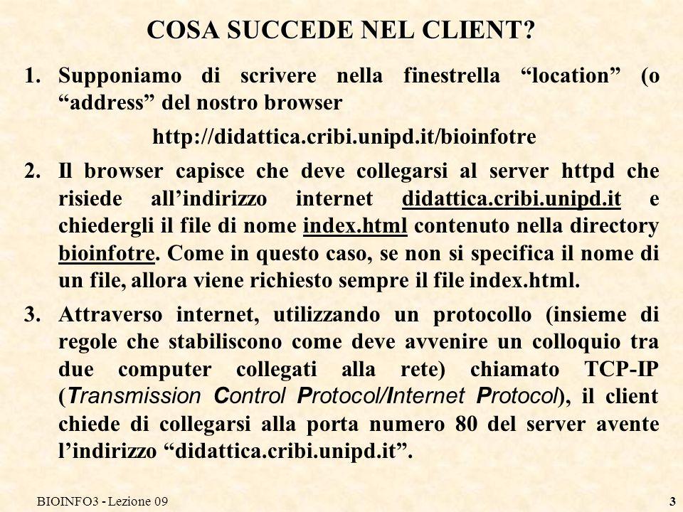 BIOINFO3 - Lezione 093 COSA SUCCEDE NEL CLIENT.